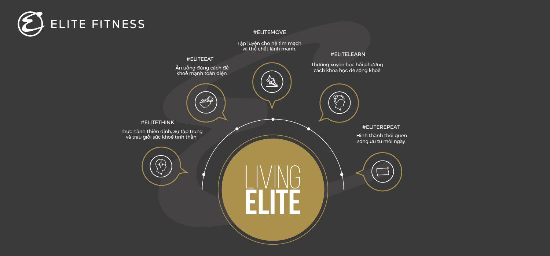 Giới thiệu về Elite